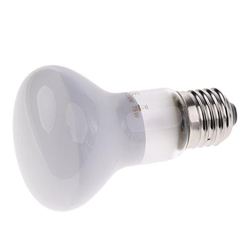 non-brand Sharplace Terrarium Lampen UVA Wärmelampe Sonnenlicht Mondlicht simulierende Lampe für E27 Fassung - 75 Watt