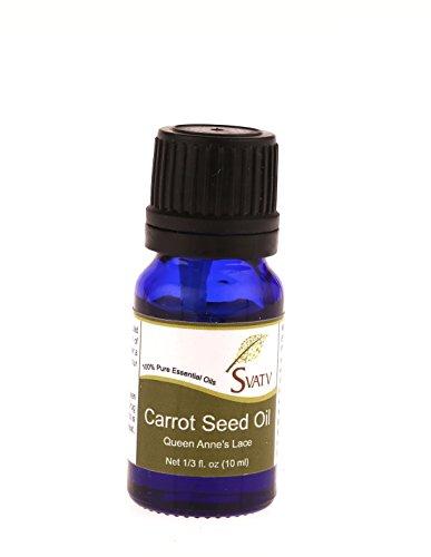 SVATV Karotten-Samen (Queen Anne's Lace) ätherisches Öl 10 ml (1/3 oz) 100% rein, unverdünnt, therapeutische Klasse (Immer Feuchtigkeitsspendende Feuchtigkeitscreme)