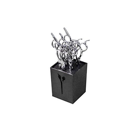 FRCOLOR Salon Schere Halter Box Friseur Kamm Clip Veranstalter Scissor Rack (schwarz) (Clip Scissor)