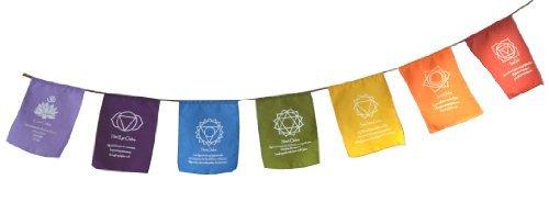 Rainbow Multi Colour Chakra Symbol & Mantra Affirmation Prayer Flags/Buntin. -
