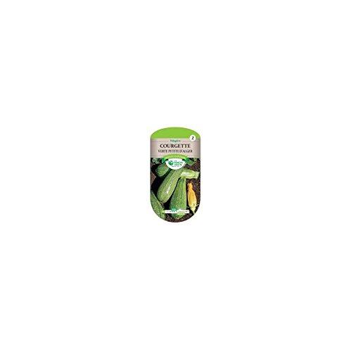 Les doigts verts Semence Courgette Verte Petite d'Alger