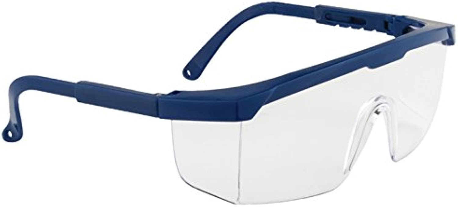 Gevavia Safety GP6101000 GP61 Vista - Gafas de seguridad