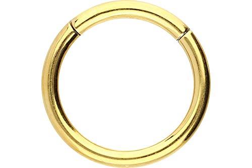 PIERCINGLINE Chirurgenstahl Segmentring Clicker   Piercing ✔ Ring ✔ Septum ✔ Helix ✔ Tragus ✔   Farben & Größenauswahl