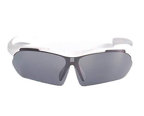 Daesar Motorradbrille Herren Damen Weiß Grau Sonnenbrille Schutzbrille Antibeschlag