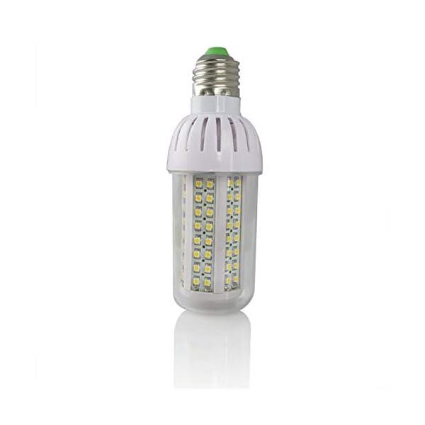 RoadRoma 4 x E27 6W 108 SMD3528 Bulbos de maíz Blanco cálido/Blanco día (Blanco) 5