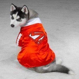 Casual Canine XS-Mighty Mutt-Hund Halloween-Kostüm