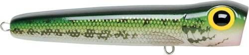 Storm Chug Bug 08 Fishing Lures, Bass, 3.25