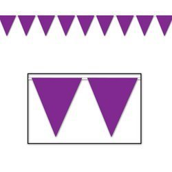 Indoor/Outdoor Pennant Banner (purple) Party Accessory (1 count) (1/Pkg) by Coolglow (Pennant Banner Purple)