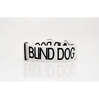 """BLIND DOG"" White Colour Coded Nylon S-M L-XL Buckle Dog Collars (No/Limited Sight) PREVENTS Accidents By Warning Others of Your Dog in Advance! (S-M 10-17""Lx1""W) 7"