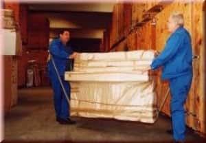 profi tragegurt set f r waschmaschine und m bel 2tlg gewerbe industrie wissenschaft. Black Bedroom Furniture Sets. Home Design Ideas