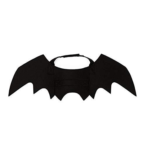 Kitty Kostüm Bat - Sungpunet Cat Bat Flügel Halloween Katzenhalsband Cosplay Fledermaus-Kostüm verkleiden Zubehör für Halloween-Party-Schwarz