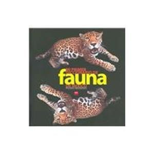 Mi primer diccionario de fauna de mexico/ My First Dictionary of Fuana of Mexico
