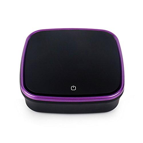 FJW Auto Luftreiniger Portable Ozon Lufterfrischer Anfangsfilter Aktivkohlefilter HEPA 3 Schichten Filtration Entfernen Sie Formaldehyd Und Schädliche Gase,Purple (Kleiner Plug-in Luftreiniger)