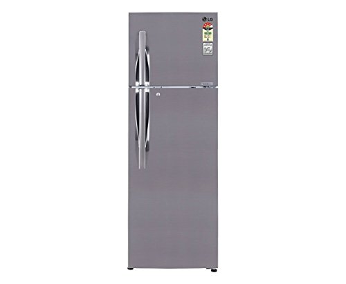 LG 258 L 4 Star Frost-Free Double Door Refrigerator (GL-M292RPZL, Shiny Steel)