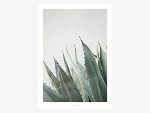 Kunstdruck Poster / Junglelow No. 11 -