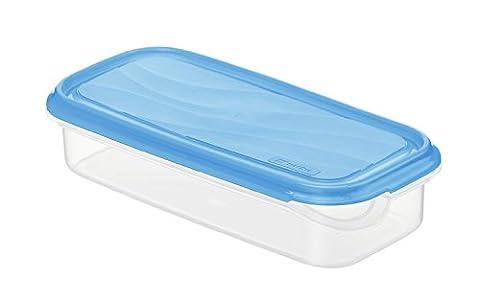 Rotho 1713806644 Frischhaltedose Rondo rechteckig aus Kunststoff PP, BPA-frei, hochwertig, geeignet für Spülmaschine und Gefrierschrank, 0,75 L, circa 24 x 12 x 5,3 cm, transparent / blau