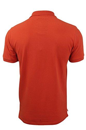 Herren Polo T-Shirt von Tokyo Laundry `Penn State`kurzärmlig Paprika