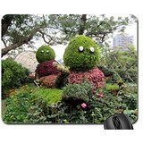 ornamental-horticulture-mouse-pad-mousepad-grass-mouse-pad
