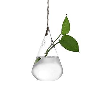 Gaddrt Plant Transparent Vase Creative Hanging Glass Ball Vase Flower Plant Pot Terrarium Container for Party Wedding Home Decor (A)