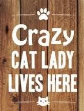 Decorative Metal Wall Art Sign ( Crazy Cat Lady lives here )
