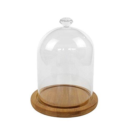 Klares Glas Glocke (Pinzhi Clear Glass Bell Jar Dome Blume Display Jar Vase mit Holzbasis)
