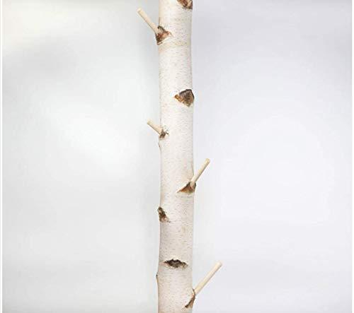 Weiße Birkenstamm-Garderobe getrocknet - 3 Meter Länge