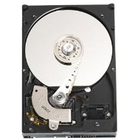 Western Digital Hard Disk 3,5pollici disco rigido