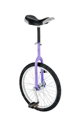 """Fishbone Sport Einrad 20"""" flieder"""