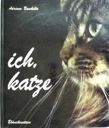 Ich, Katze