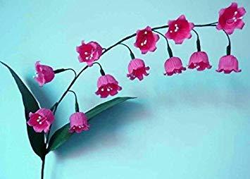 50 pcs / sac Muguet Graines de fleurs rares Indoor de Bell Orchidée arôme riche Bonsai plantes en pot Balcon bricolage jardin Noir
