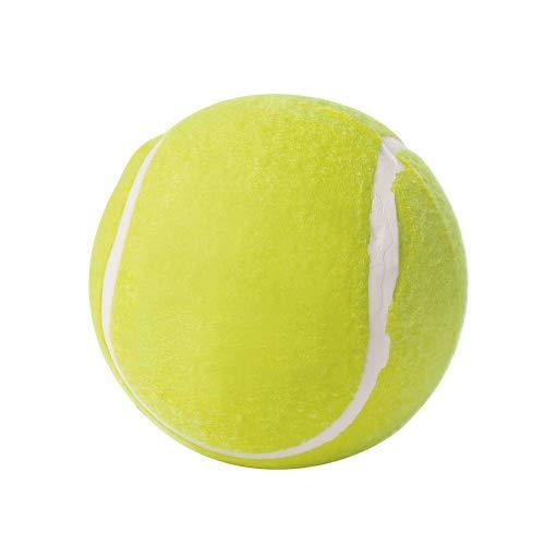 Spielzeug für Hunde, tennispalla Big, 13cm
