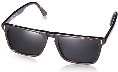 ef1c82765c63cc Modische Sonnenbrille - Die preiswertesten Varianten verglichen