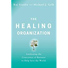 The Healing Organization: Awakening the Conscience of Business to Help Save the World (English Edition)