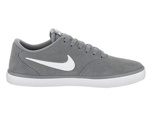 Nike Herren Sb Check Solar Skaterschuhe Gris (Gris (cool grey/white))