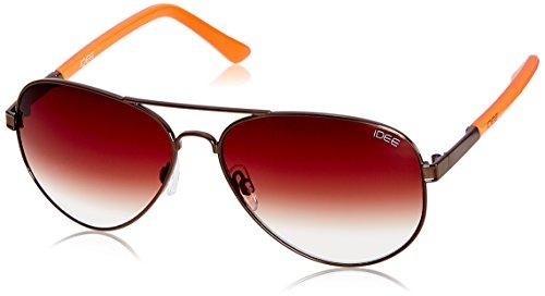 IDEE Aviator Sunglasses (IDS1848C5SG|100|Shiny Brown ) image