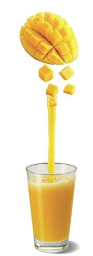 Moulinex Faciclick Cristal LM310E10 Batidora de vaso con potencia de 500 W regulables a través de dos velocidades, vaso de cristal de 1.25 litros, permite picar hielo, pies de goma antideslizantes