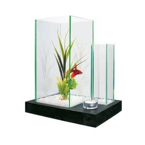 zolux aquarium aqua bamboo flora animalerie. Black Bedroom Furniture Sets. Home Design Ideas