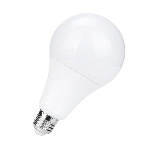 15w Kugel (LED Lampe,Jaminy 2 STÜCKE 15W E27 LED Lampe Hause Kaltweiß/ Warmweiß Lichtsteuerung [Energieklasse A+++] (Kaltes Weiß))