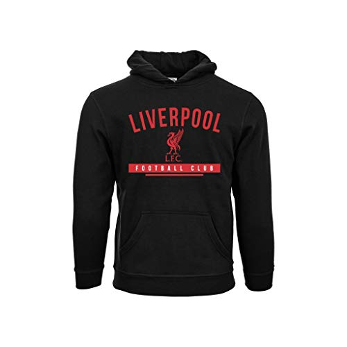 Liverpool - Premium Youth Hoodie, Youth X-Large Youth Hoodie
