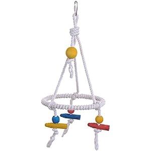Vogelschaukel aus Seil, geeignet für verschiedene Sittiche