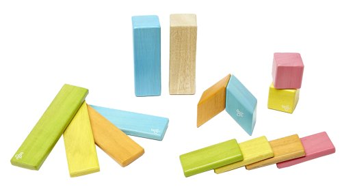 14 Piece Tegu Magnetic Wooden Block Set, Tints