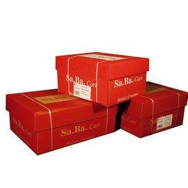 'SA.Ba.Cart s0037512601Papier A Endlospapier, 375mm x 12, 60g/qm, leicht zu lesen Piste festen, Packung 2000Blatt