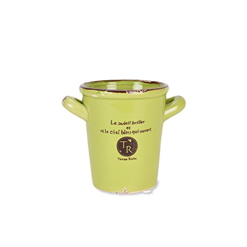scrafts green ceramic/procelain artificial/original flower pot/planter/container with drainage hole for home décor/ garden décor/ hall décor/ table décor  available at amazon for Rs.275