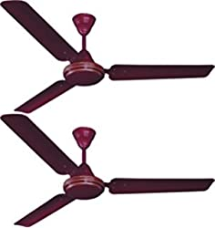Crompton Sea Wind Ceiling 1000mm Fan Brown Colour Pack of 2pcs By fulfilled by Light house