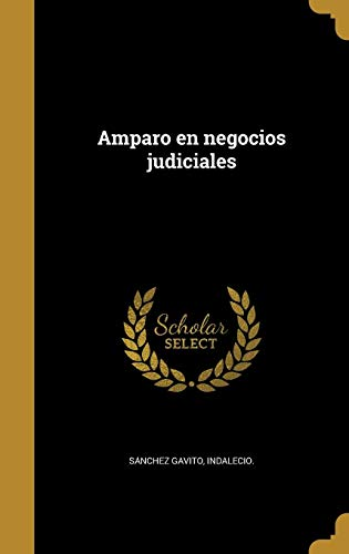 SPA-AMPARO EN NEGOCIOS JUDICIA