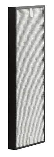 Rowenta XD6060 - Filtro carbón