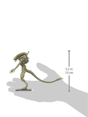 """Aliens OCT158462 - Figura de acción (Escala 1:8, """"Xenomorph Boiler PX) 2"""