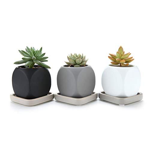 T4u 6.3cm ceramica moderno dado design succulento vaso/cactus vasi di fiori contenitore porta porcellana piante con vassoio quadrato - colore pieno confezione da 3