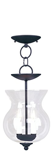 Livex Lighting 4393-04 Convertible Flush Mount with Clear Glass Shades, Black by Livex Lighting