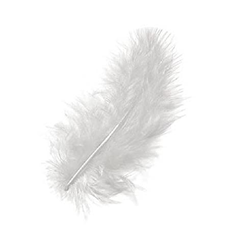 Plume Blanche - Plumes